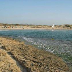 חניון לילה - שמורת טבע חוף דור הבונים