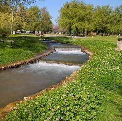 חניון לילה - גן לאומי חורשת טל