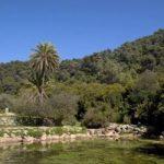 חניון לילה - גן לאומי הר הכרמל - פארק הכרמל